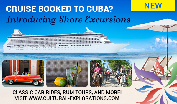 Introducing Shore Excursions